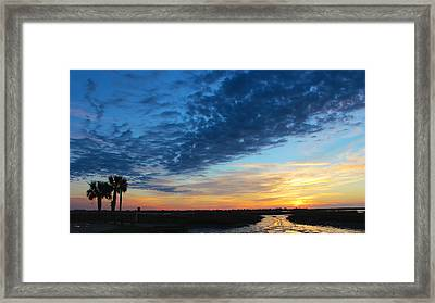 Southern Sky Framed Print by Lisa Campbell
