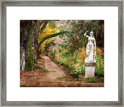 Southern Strength Framed Print