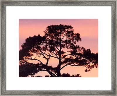 Southern Sundown Framed Print