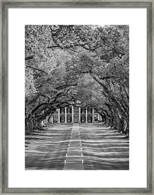 Southern Time Travel Bw Framed Print