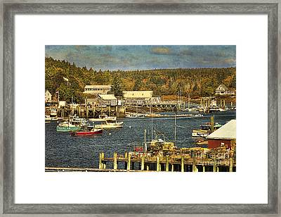 Southwest Harbor Framed Print by Cindi Ressler