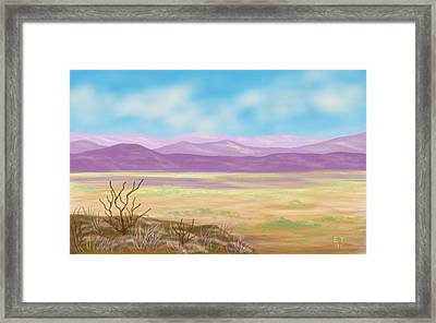 Southwest Panorama Framed Print