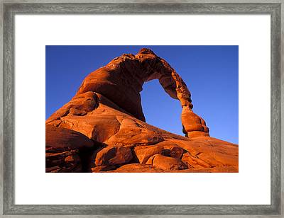Southwest Sentinel Framed Print by Russ Bishop
