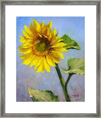 Southwest Sun Framed Print by Bill Inman