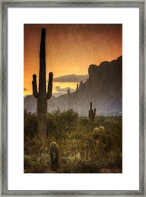 Southwestern Style  Framed Print
