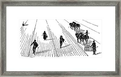 Sowing And Harrowing Corn Framed Print by Universal History Archive/uig