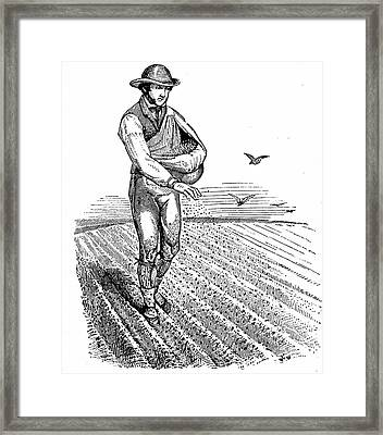 Sowing Seed Broadcast Framed Print by Universal History Archive/uig