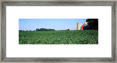 Soybean Field With A Barn Framed Print by Panoramic Images