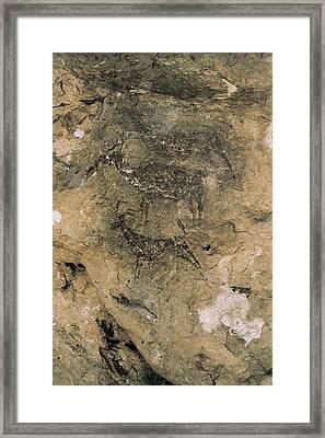 Spain. Bicorp. La Ara�a Cave. Deers Framed Print by Everett