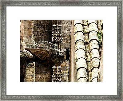 Spain - Seville Cathedral - Gargoyles Framed Print by Jacqueline M Lewis