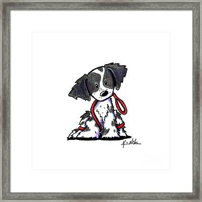 Spaniel Puppy With Leash Framed Print