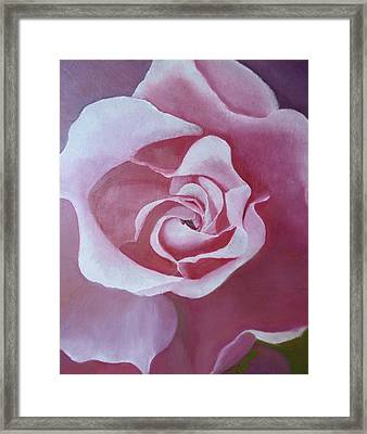 Spanish Beauty 2 Framed Print by Claudia Goodell