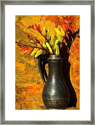 Spanish Flags In Pewter  Framed Print by Chris Berry