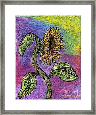 Spanish Sunflower Framed Print by Sarah Loft