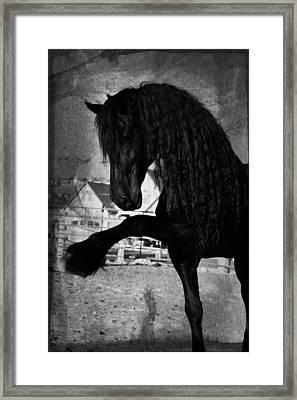 Spanish Walk Framed Print by Royal Grove Fine Art