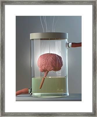 Spare Brain Framed Print