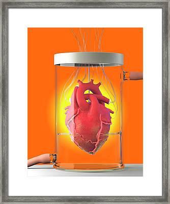 Spare Heart Framed Print by Tim Vernon