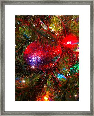Framed Print featuring the photograph Sparkle And Shine by Deb Martin-Webster