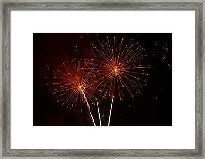 Framed Print featuring the photograph Sparkle by Linda Mishler