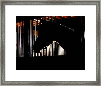 Sparkle Walked In To A Bar.... Framed Print by Phil Cheevers