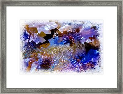Sparkles Framed Print by Kathleen Struckle