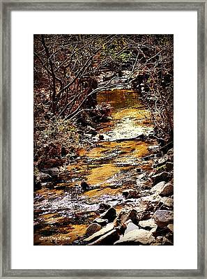 Framed Print featuring the photograph Sparkling Creek by Tara Potts