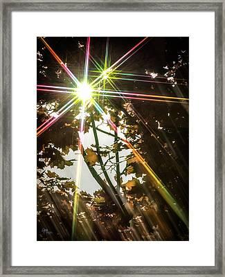 Sparkling Dawn -twin Framed Print