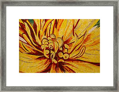 Sparkling Intricate Golds And Yellows - A Floral Ceramic Tile Mosaic Framed Print