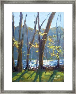 Sparkling Light On The Lake Framed Print