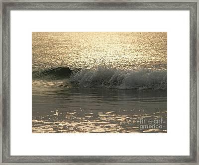 Sparkling Sea In Hunting Island Dawn Framed Print