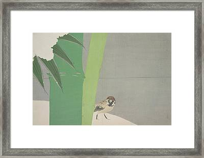 Sparrow And Bamboo., Kamisaka, Sekka, Artist Framed Print