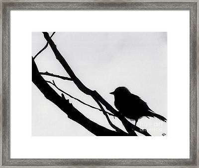 Framed Print featuring the drawing Sparrow In A Gray Sky by D Hackett