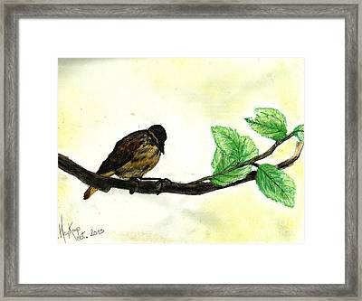 Sparrow On A Branch Framed Print by Francine Heykoop
