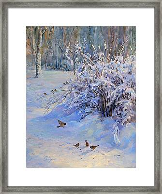 Sparrow On Snow Framed Print