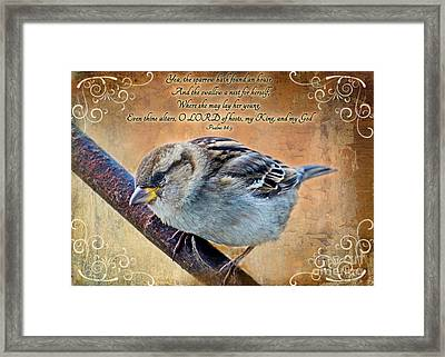 Sparrow With Verse Framed Print by Debbie Portwood