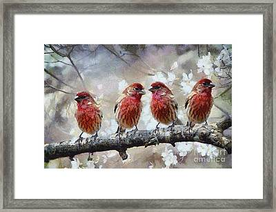 Framed Print featuring the painting Sparrows by Georgi Dimitrov