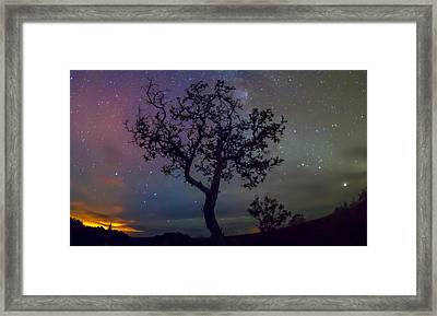 Speak To Me Only With Your Eyes  Framed Print by Sean King
