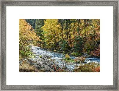 Spearfish Creek Autumn Framed Print