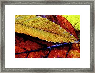 Framed Print featuring the digital art Spearpoint by Chuck Mountain