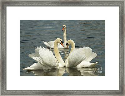Special Kinda Love Framed Print