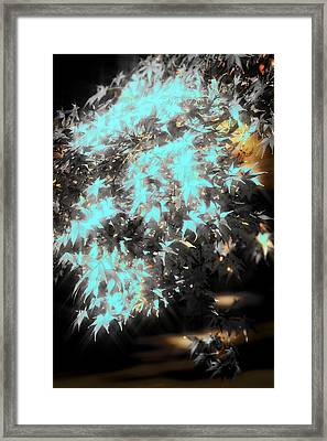 Special Leaves Framed Print by Kellice Swaggerty