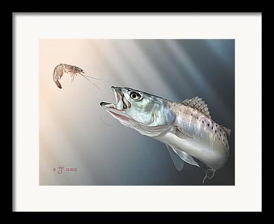 Speckled Trout Framed Prints