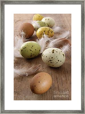 Speckled Easter Eggs  On Wooden Table  Framed Print by Sandra Cunningham