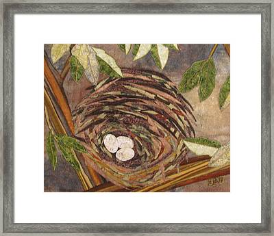 Speckled Eggs Framed Print