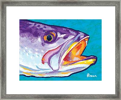 Speckled Trout Colors Framed Print by Kevin Putman