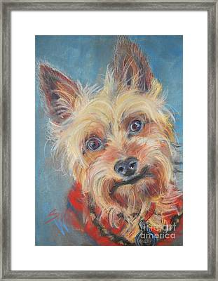 Spector Framed Print by Mindy Sue Werth