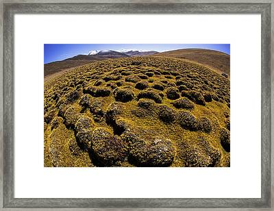 Speed Bumps Framed Print by Aaron Bedell