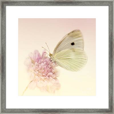 Spellbinder Framed Print by Betty LaRue