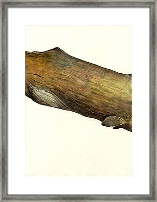 Sperm Whale Second Part Framed Print by Juan  Bosco