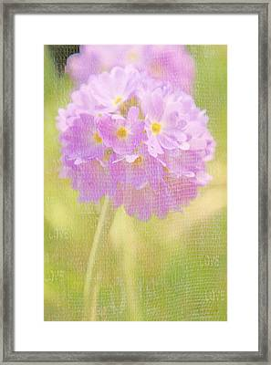 Sphere Florale - 01tt01a Framed Print by Variance Collections